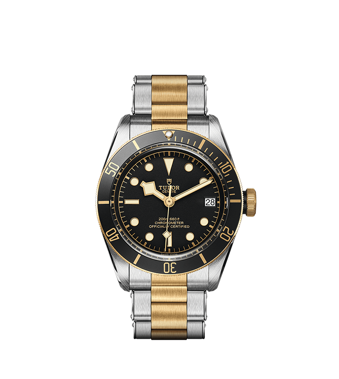 TUDOR Black Bay S&G