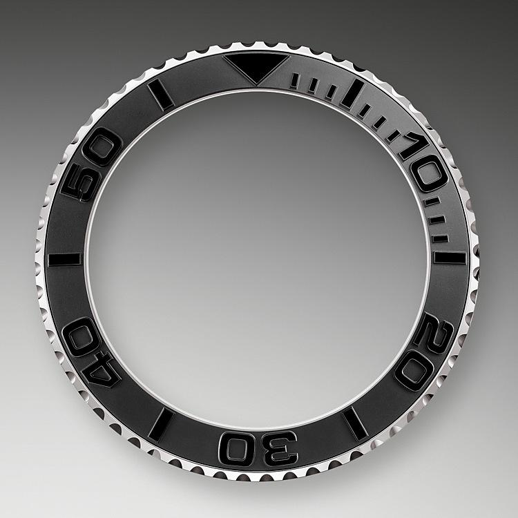 Bidirectional Rotatable Bezel