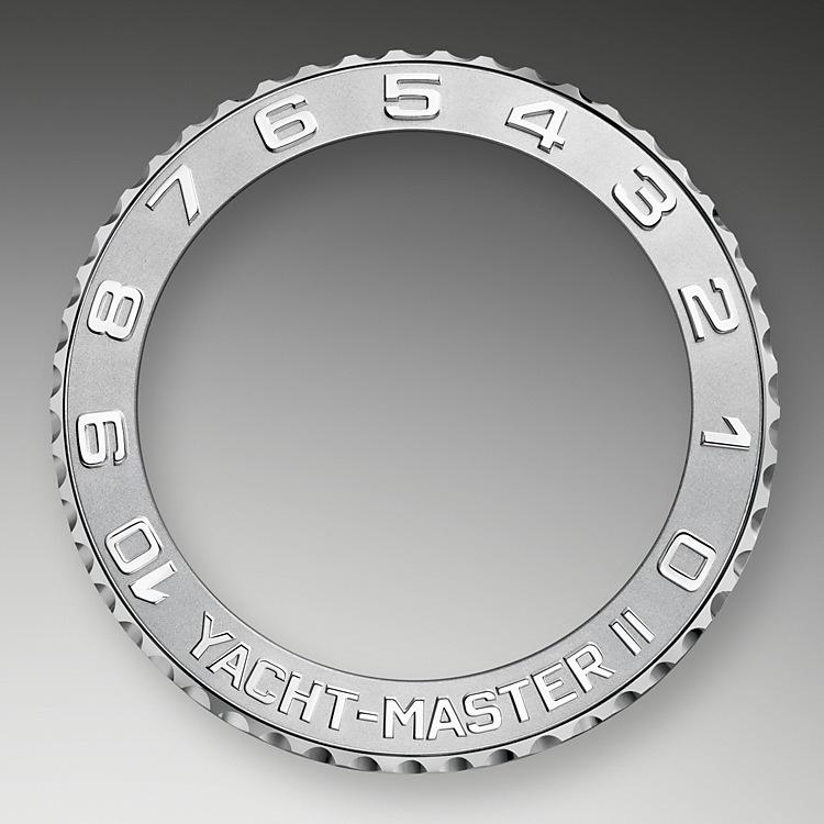 Ring Command Bezel